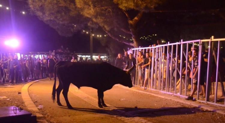 encierro-de-nuit-caissargues-2015
